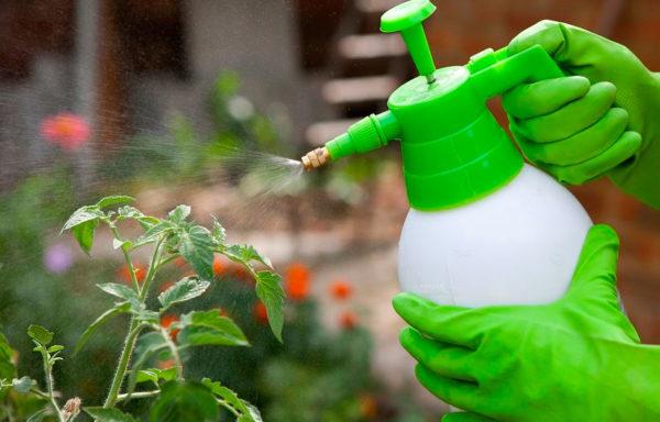 Средства химической защиты растений и удобрения