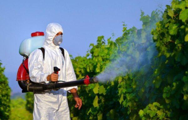 Средства от грызунов и насекомых, бытовая химия
